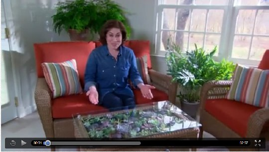 Picture from a succulent coffee table how to video from marthastewart.com