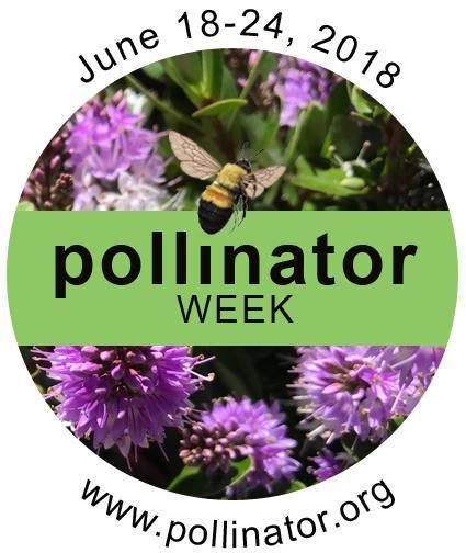 Pollinator Week 2018 - June 18-24 logo. www.pollinator.org
