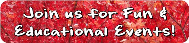 Tree leaves with fall color and wording - Join us for fun and educational events!