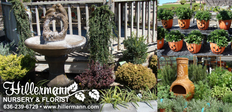 Plant and item displays from Hillermann Nursery and Florist with the logo and store information