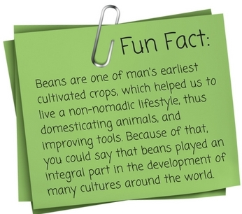 Fun Fact on green beans graphic by Botanical Interests seeds
