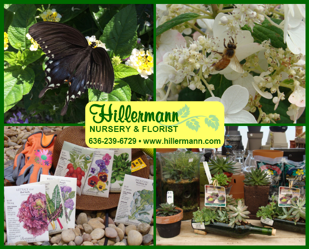 Pictures with the logo and store information graphics - Hillermann Nursery and Florist, www.hillermann.com