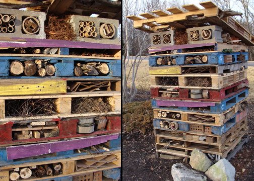 Pictures of the Insect Habitat at Hillermann Nursery and Florist in Washington, Missouri
