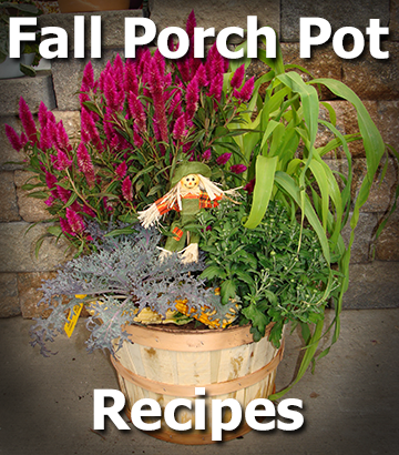 Fall container garden picture with text - Fall Porch Pot Recipes - from Hillermann Nursery and Florist