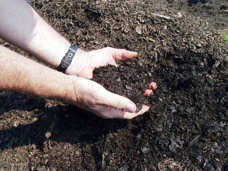 Hands shown with soil and compost