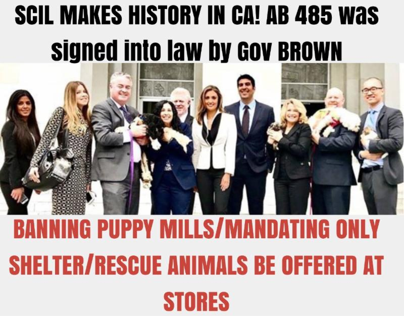 AB 485 Signed Into Law