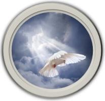 Wings of Spirit