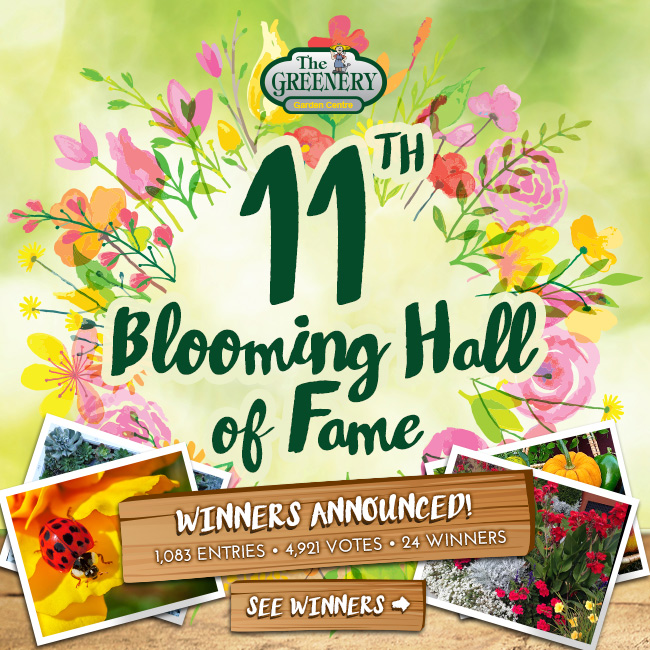 Blooming Hall of Fame Winners 2017