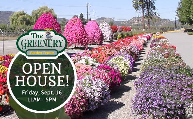 Greenery Garden Centre Open House