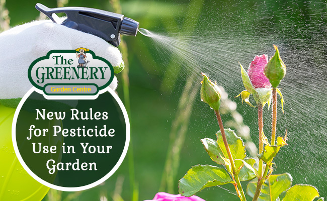 New Rules for Pesticide User in Your Garden