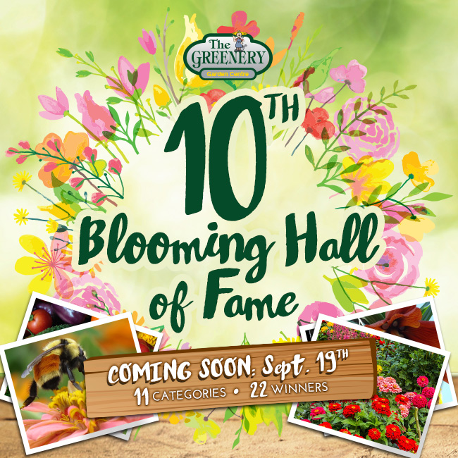 10th Blooming Hall of Fame 2016