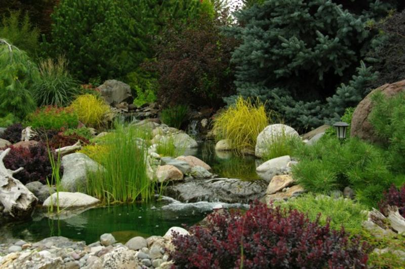 Best Water Garden Feature - Public Vote