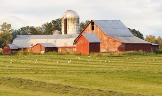 barn farm landscape