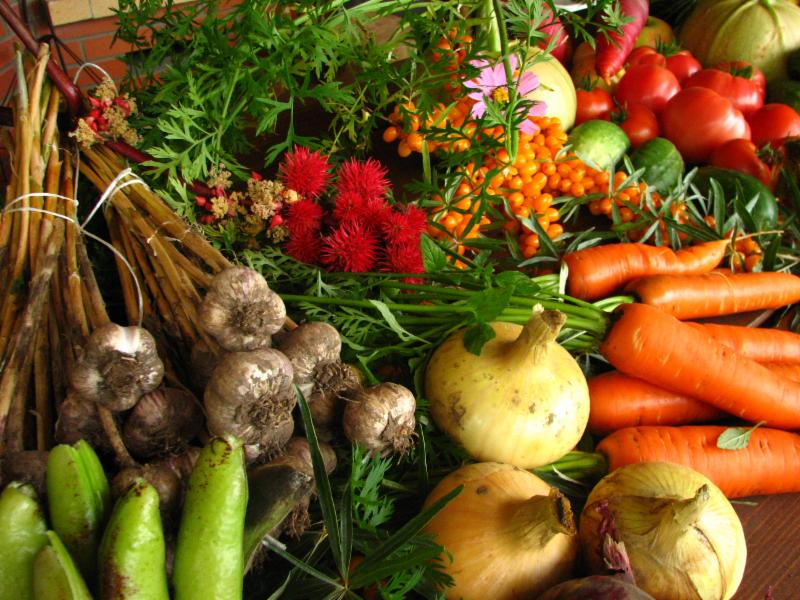 vegetables, produce, carrots, onions, garlic