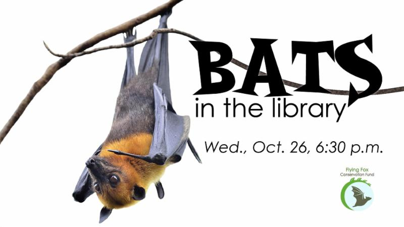 Bats in the Library