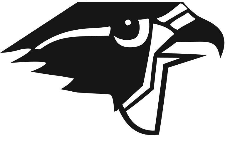 Falcon Head Logo