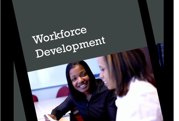 Diversity Workforce Development Photo