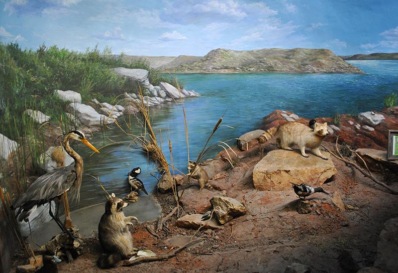 Lake Meredith Aquatic and Wildlife Museum_ Fritch