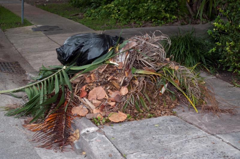 garbage illegal dumping
