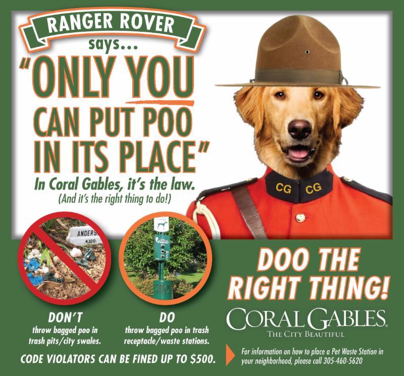 ranger rover dice
