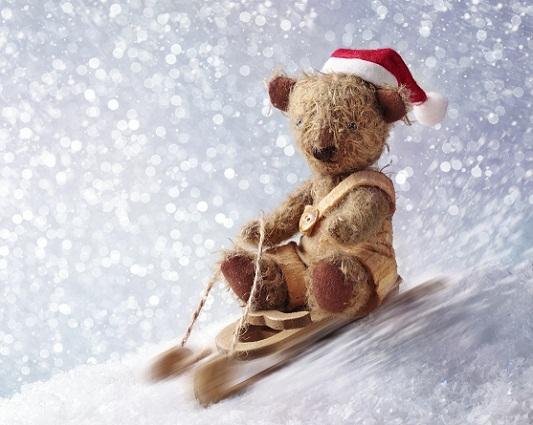 toy bear on sled