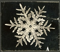 William Bentley snowflake image