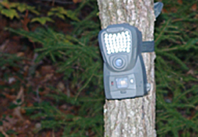Photo of a trail game camera by Rick Brackett