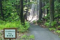Photo of nature trail by Michael Nerrie