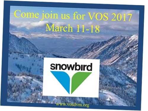 VOS 2017 Conference slide