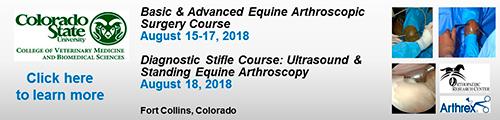 CSU August 2018 arthroscopic surgery courses