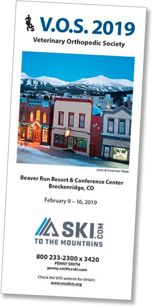VOS 2019 Conference brochure
