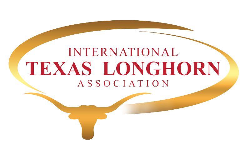 logo_ITLA 2013