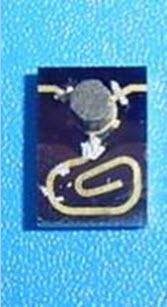 RADIorC - MSSM-2.0-55G