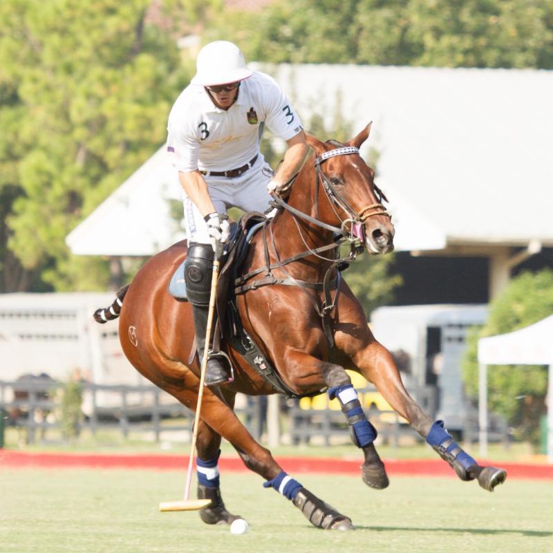 Polo Professional Matt Coppola Becomes Newest Horses Healing Hearts Ambassador