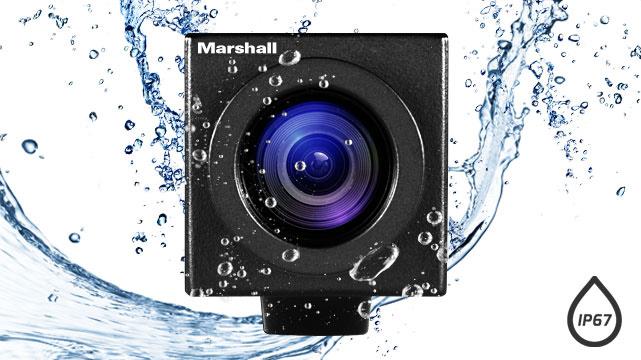 Marshall_CV502-WPMB_WPM