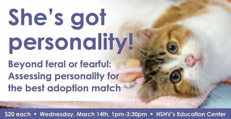 Assess Cat Personality  Workshop 3.14.18