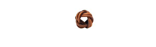 the Woggle: Scouter Essentials Made Easy