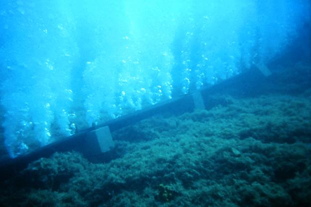 Bubble Wall Could Stop Spread of Aquatic Invasive Plants in Lake Tahoe