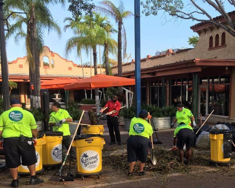 the grovite coconut grove e newsletter