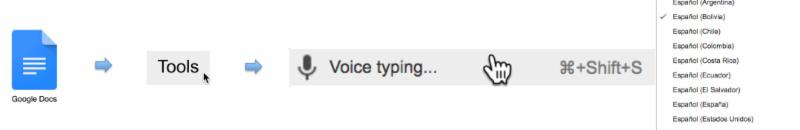 Picture icon representation of Google Doc to Tools to Voice Typing to Select Input Language