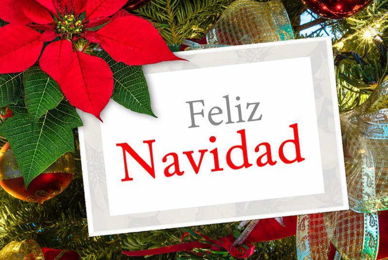 Christmas greeting card with text Feliz Navidad ribbon and poinsettia decoration on christmas tree