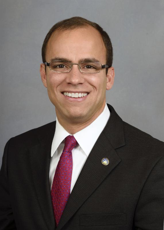 Council Portrait