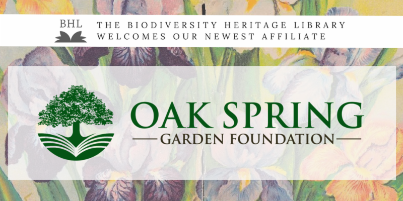 Oak Spring Garden Foundation Joins BHL