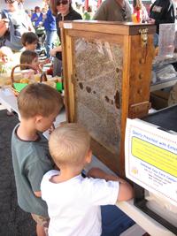 kids looking at bees