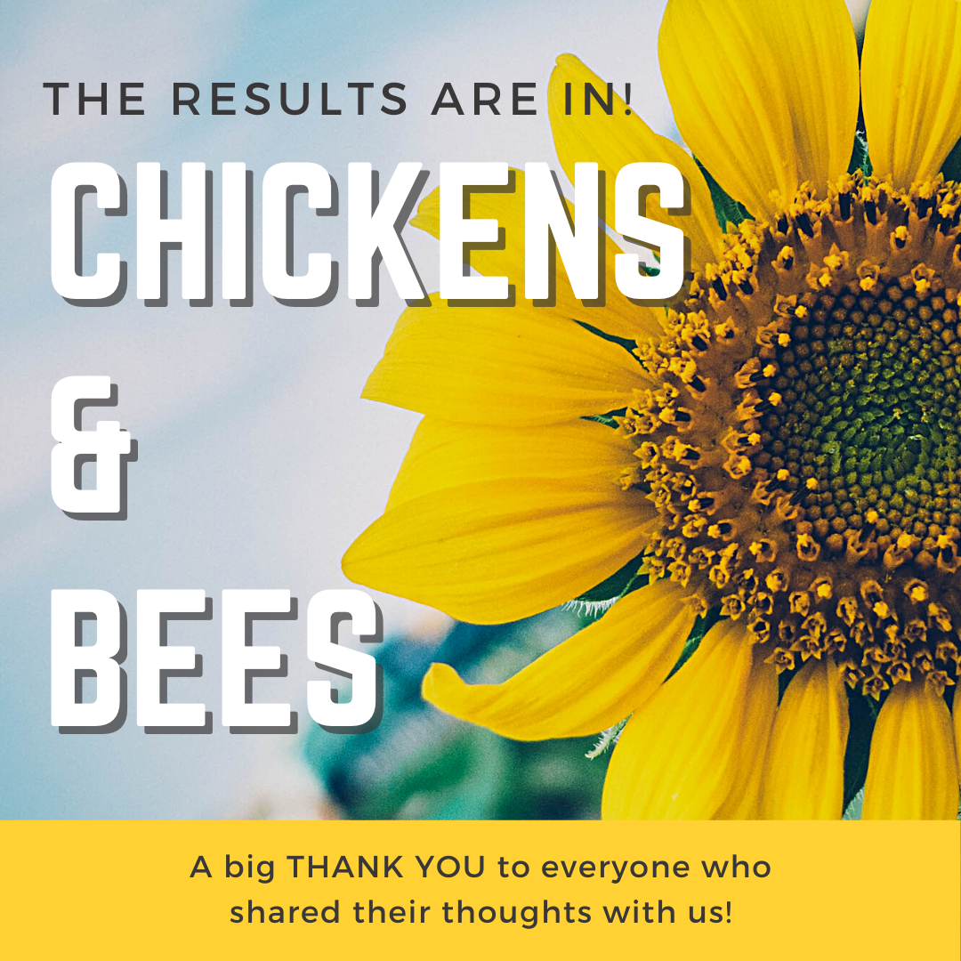 Close up image of a sunflower with The Results are In Chickens and Bees and a thank you for participation