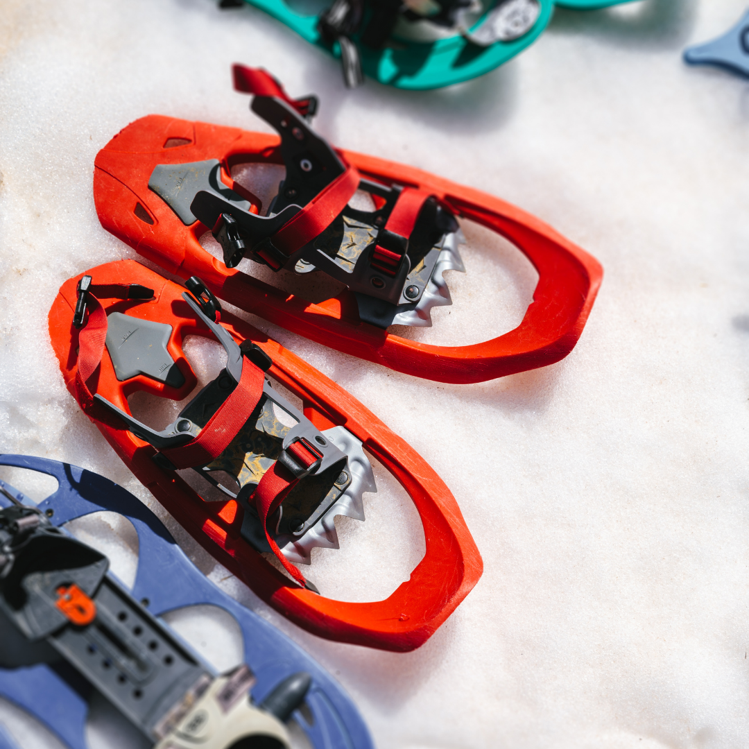 Photo of blue orange and teal snowshoes on top of snow