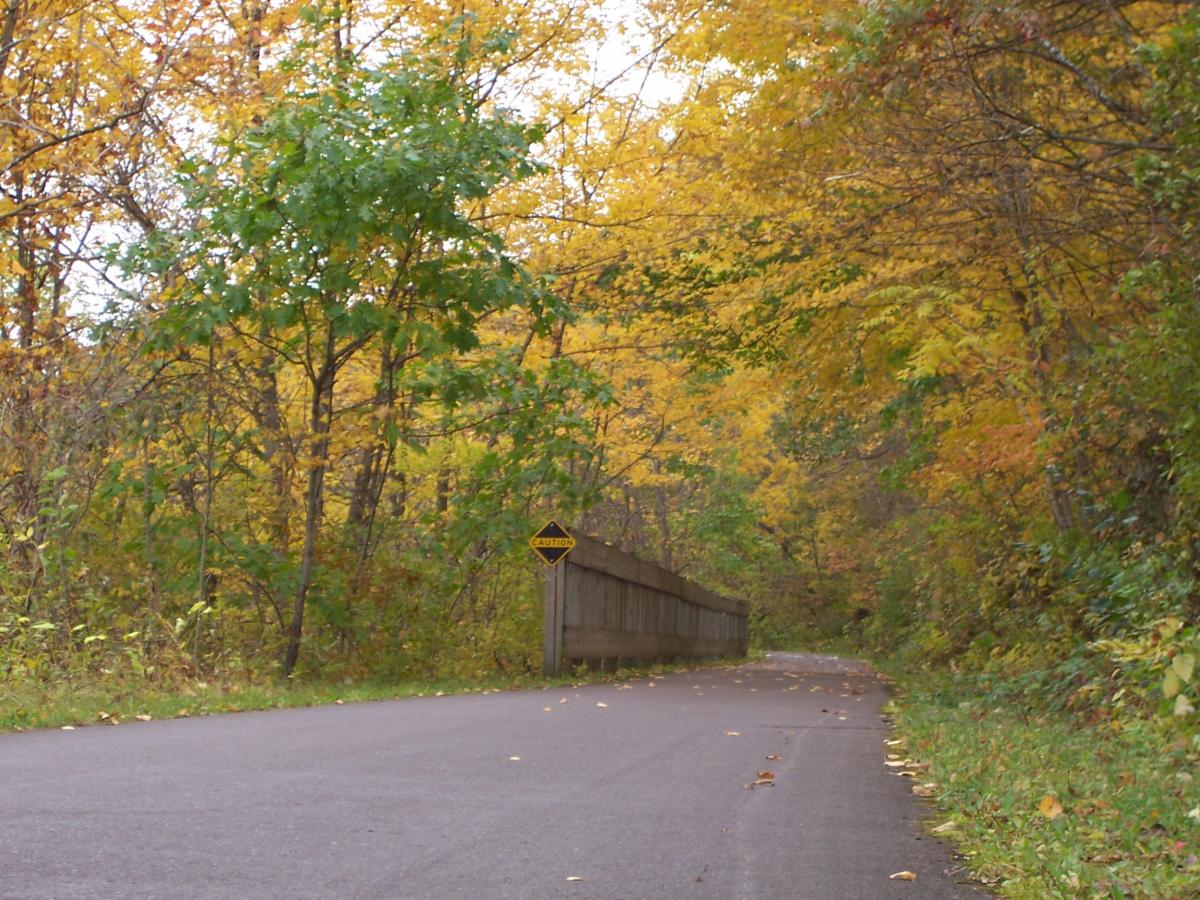 Photo of the Cannon Valley Trail with yellowing trees