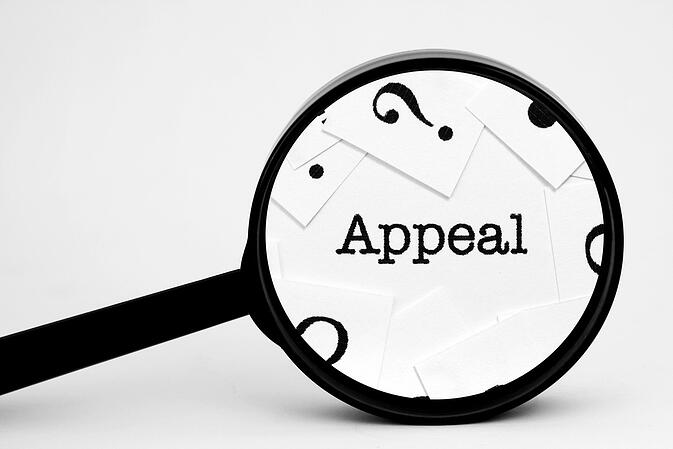 Magnifying glass hovering over the word appeal