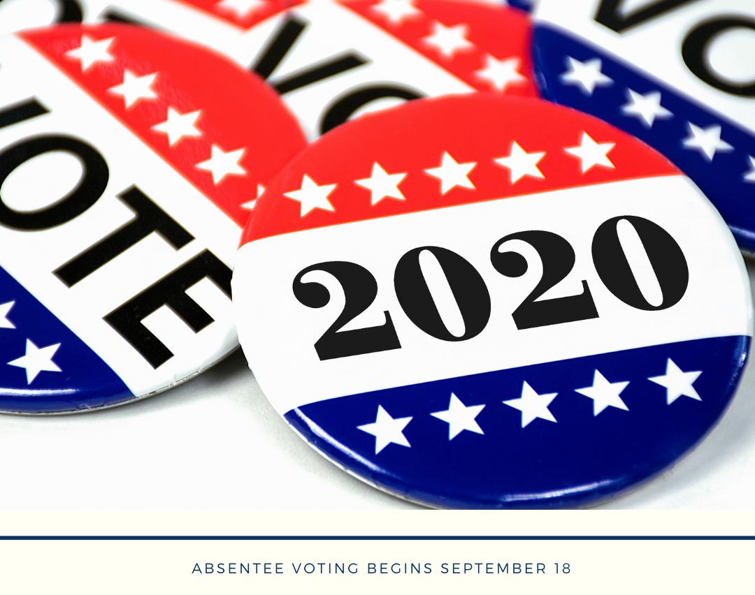 Image of Vote 2020 pins