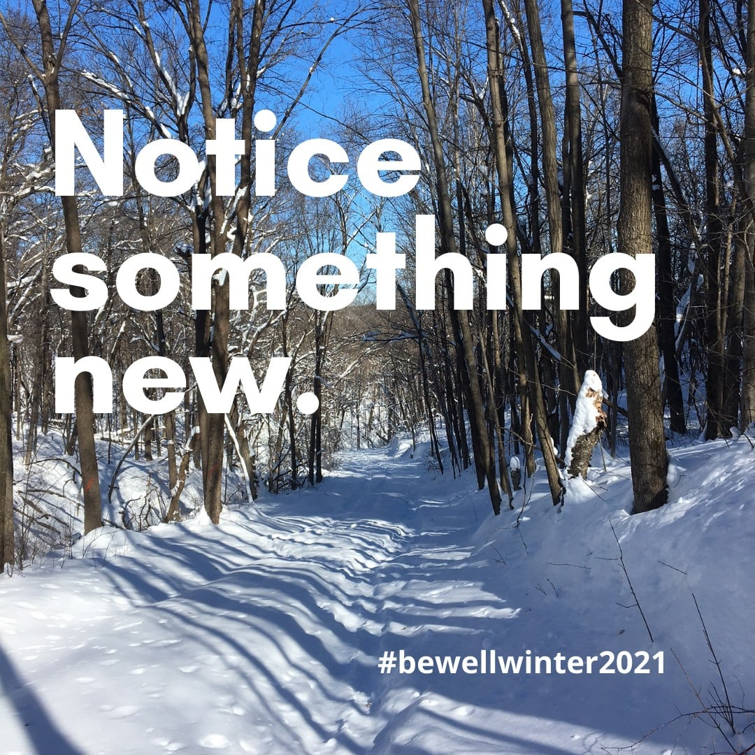 Image of winter trail with words Notice something new and hashtag bewellwinter2021